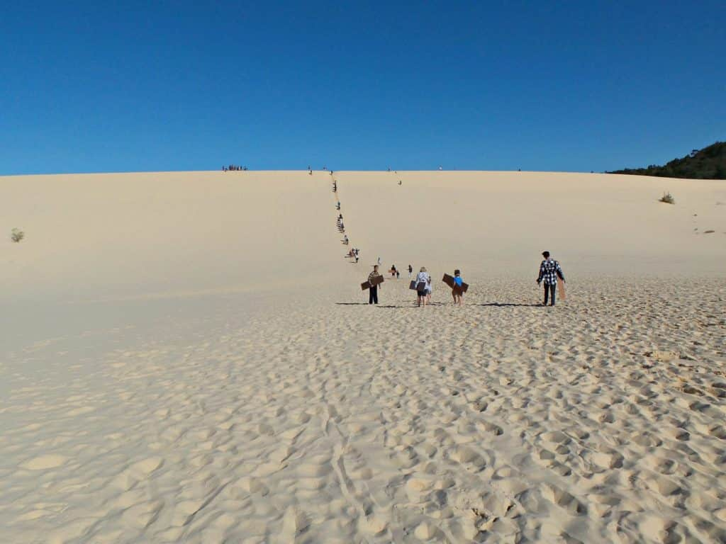 People climbing a sand dune on Moreton Island to go sand boarding