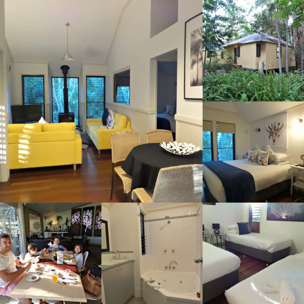 Collage of images of Cedar Creek Lodges at Thunderbird Park, Mount Tamborine