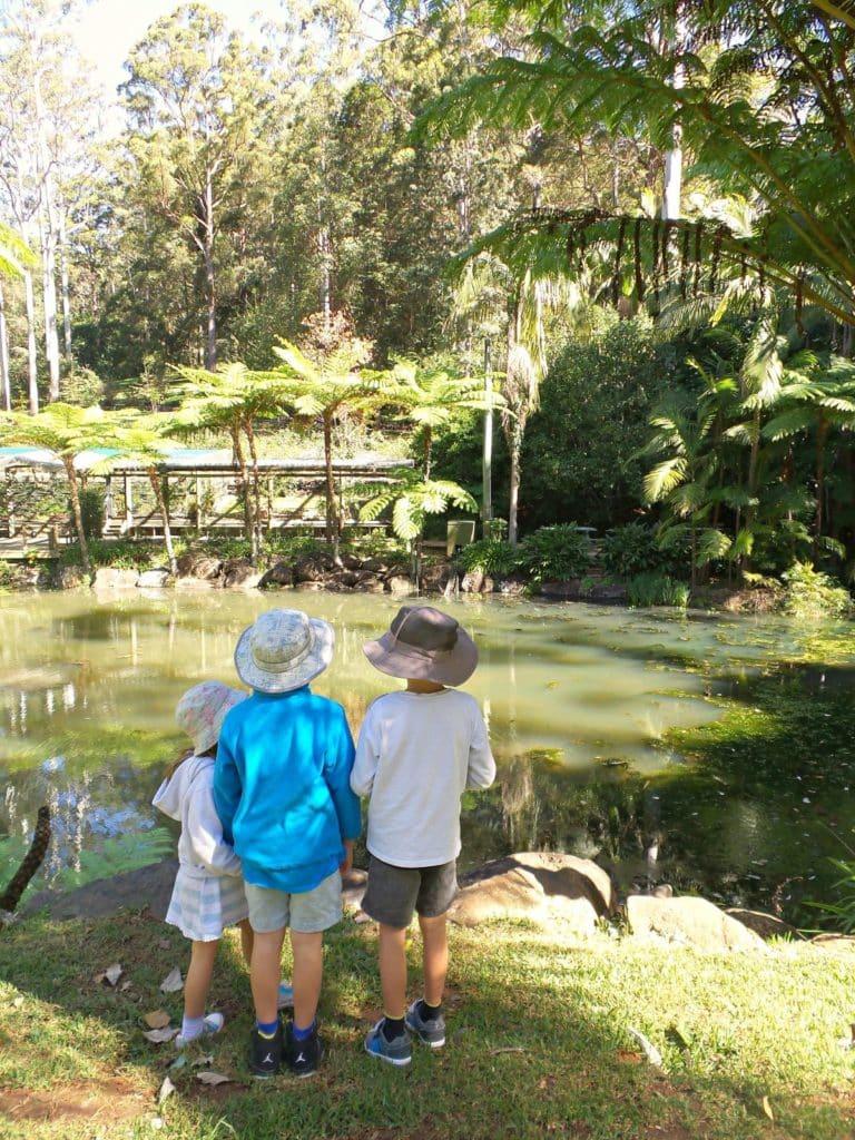 Three kids at Tamborine Mountain Botanic Gardens