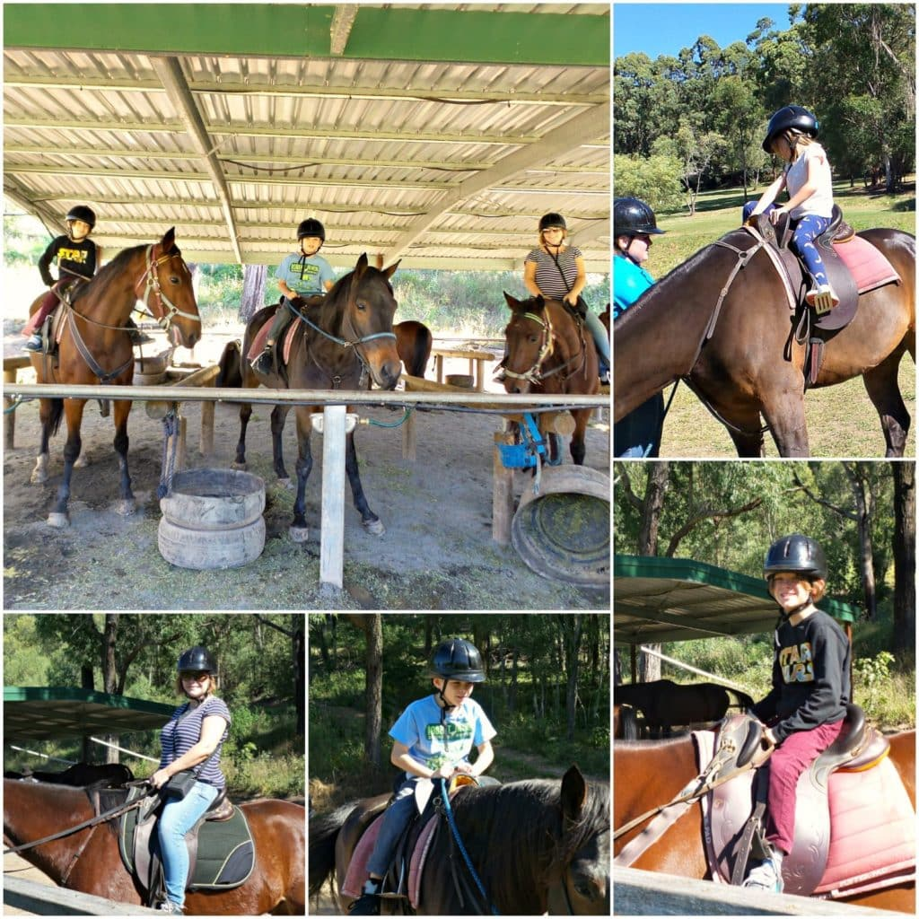 Collage of images of a family horse ride with horse riding hinterland