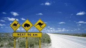 Australia road scene
