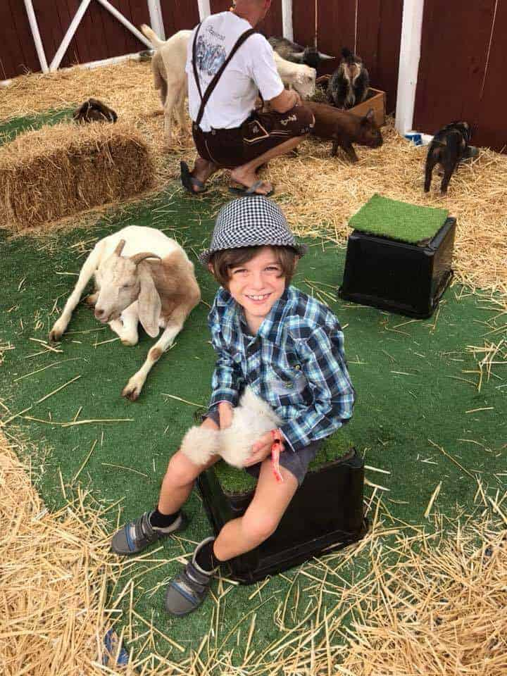 A boy at the petting zoo at Oktoberfest Brisbane