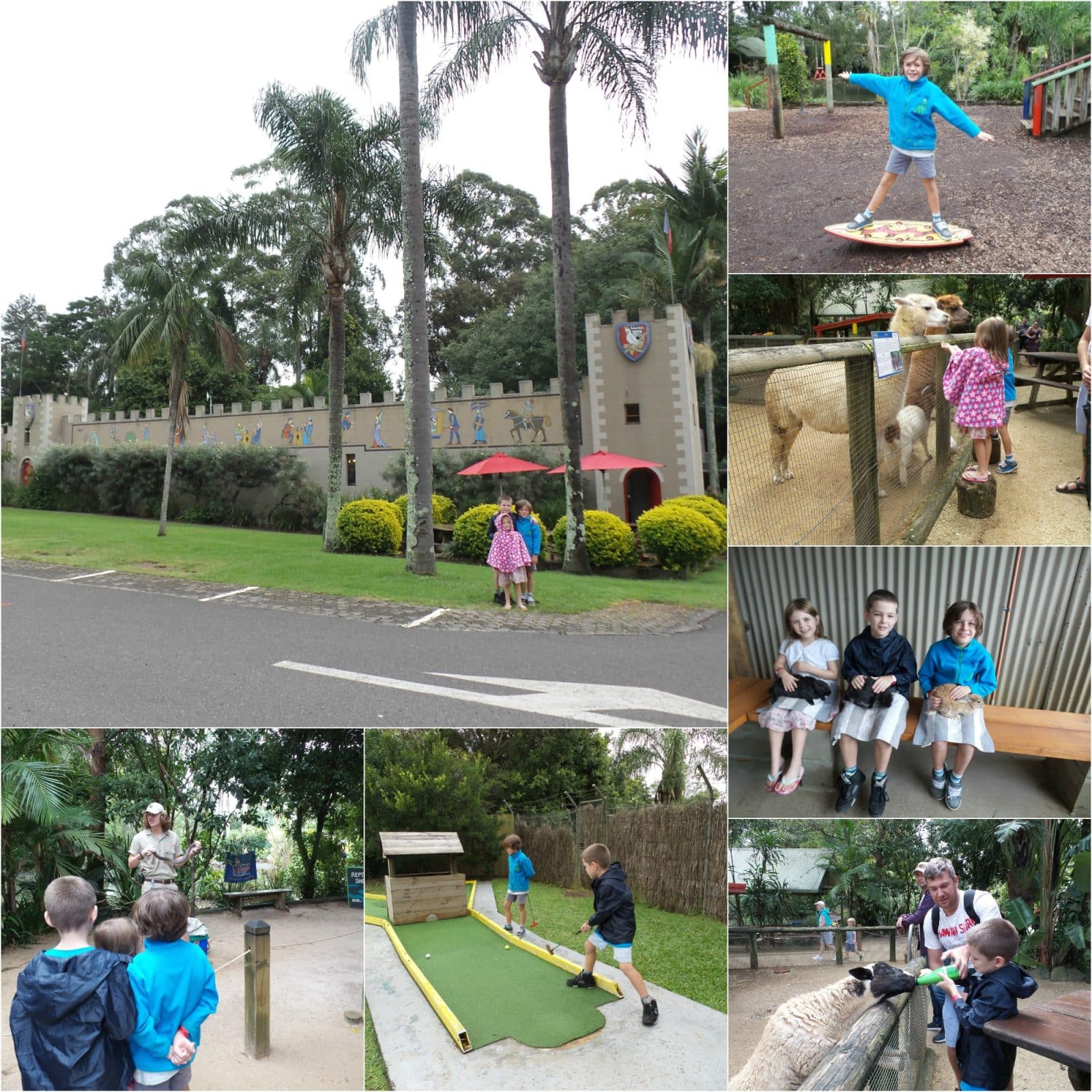A collage of pics of kids at Macadamia Castle near Byron Bay