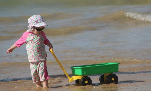The best beach cart 2019: Ultimate guide to buying the best beach wagon with big wheels