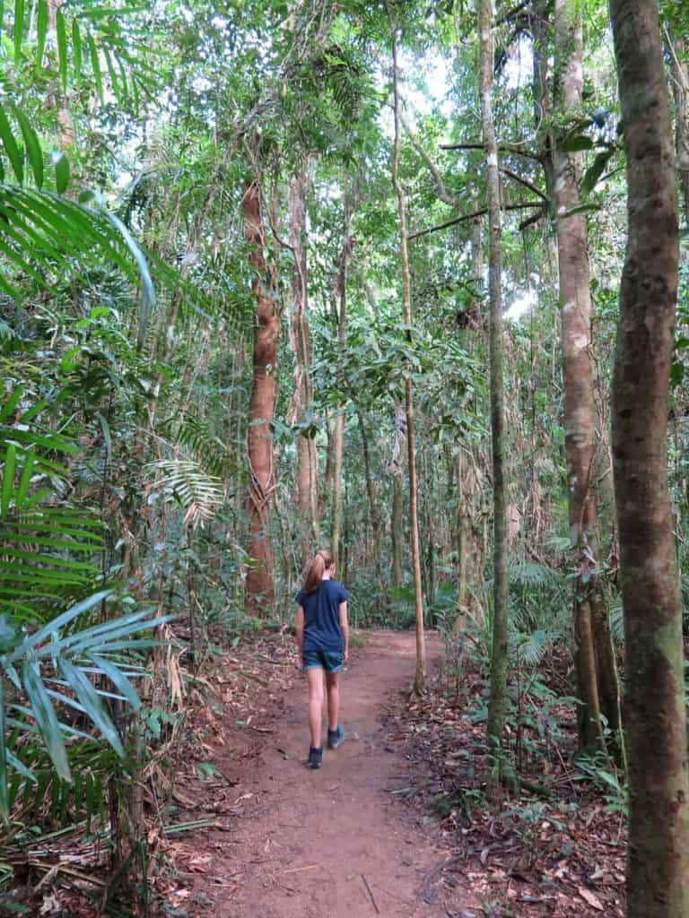 Somebody walking Mossman Gorge on Australia's East Coast