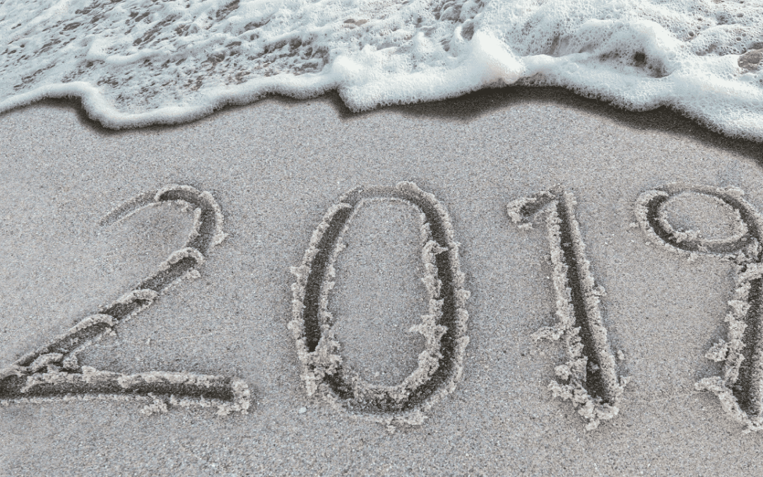 2019: A year in review for Smart Steps to Australia