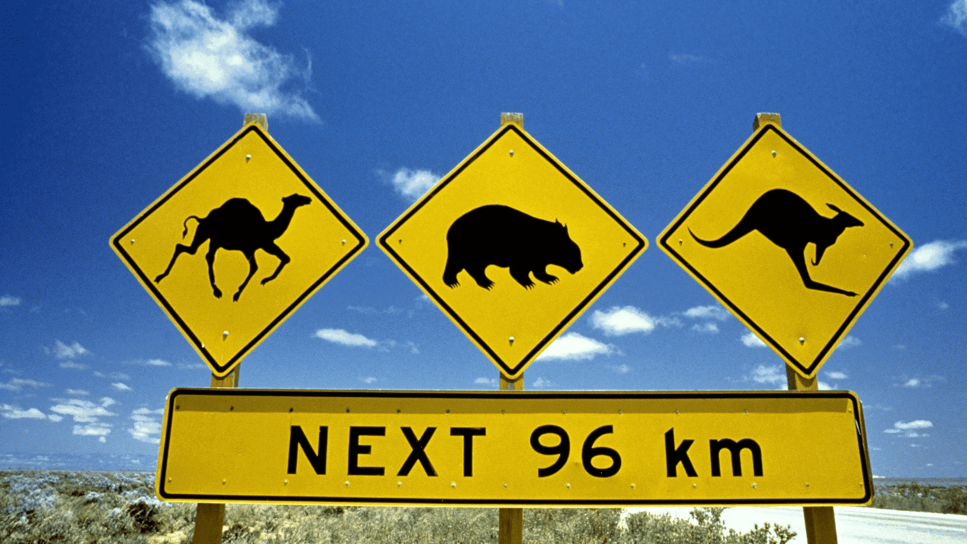 Image of road signs in Australia with different animals on